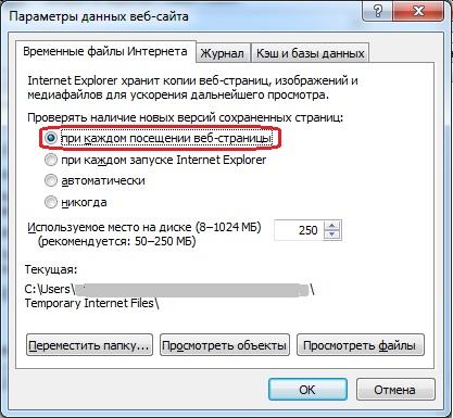IE - параметры данных веб-сайта