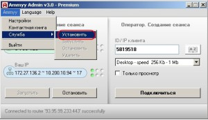 Аmmy Admin__установка_службы
