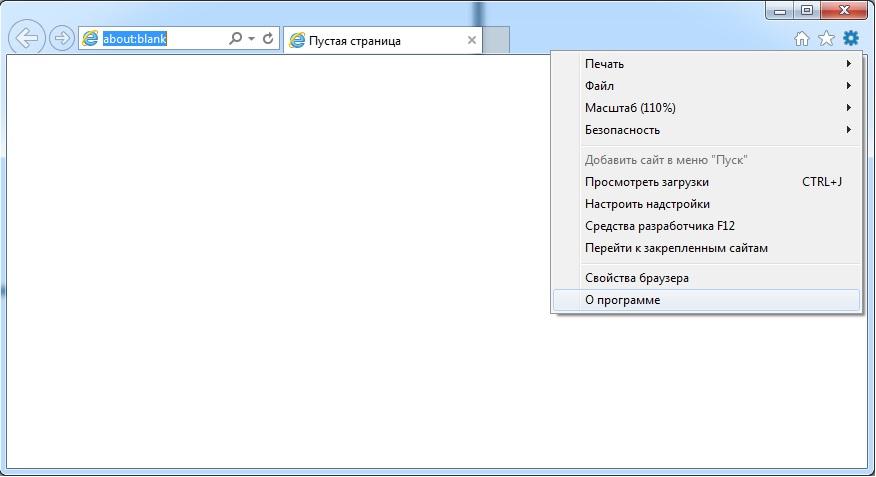 Internet Explorer - о программе